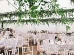 White linings with hanging ivy