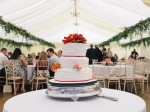 White linings with hanging ivy and wedding cake