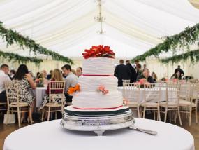 Wedding cake and hanging ivy